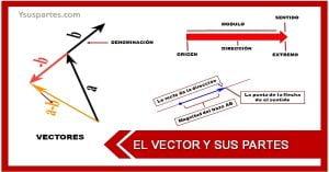 Listado de las partes de un vector