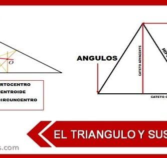 partes de un triangulo rectangulo