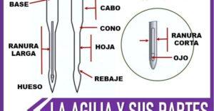 cuales son las partes de una aguja